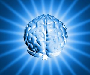 blauwe hersens
